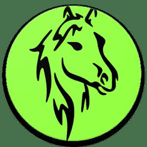 At Yarışı ve Tahminleri